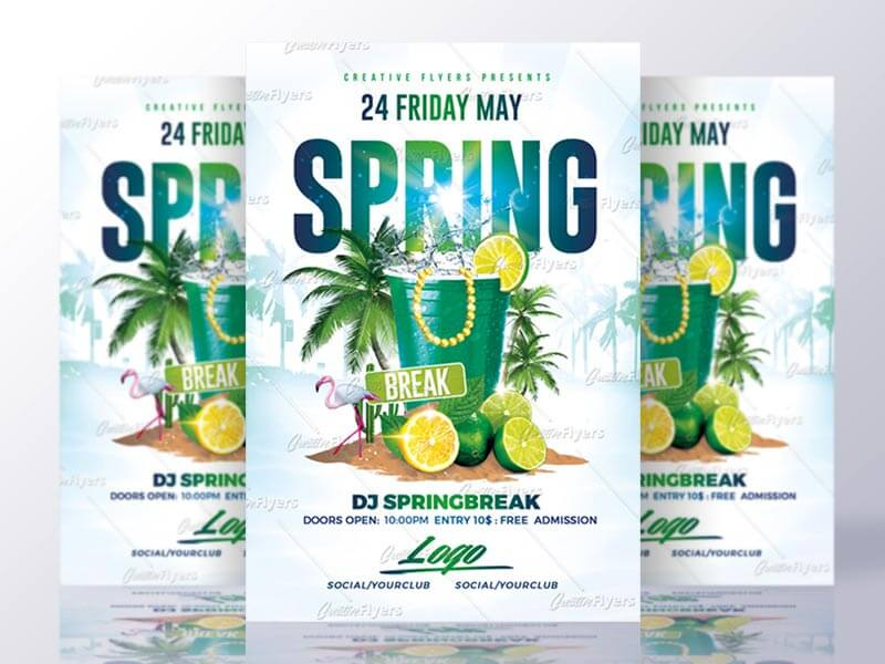 Spring Break Flyer Party Psd